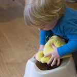 Potty Training Information