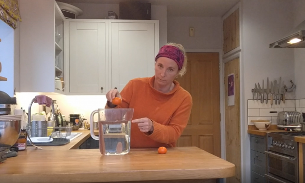 Video: How to be a Scientist at Home!