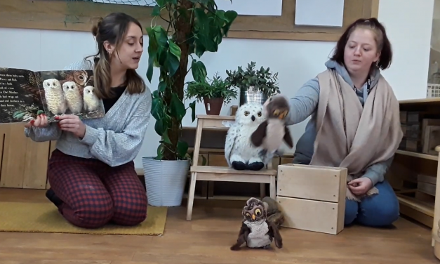 Video: Owl Babies with Maya and Abi